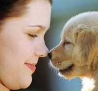 dog loving How A DOG Can Change Your Life?