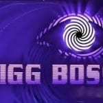 All You Need To Know About BIG BOSS 9 13