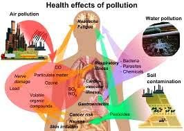 Take Action & Reduce Pollution: It Starts With You 5