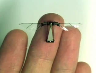 www.harvard.edu insect sized robot