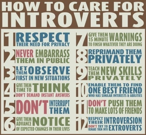 introverts introverts