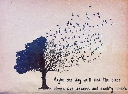 Understanding The Phenomena of Dreams 1
