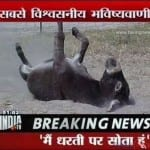 Ten Ridiculous Things That Happen Only In India! 15