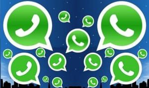 whatsapp-tfj whatsapp genie