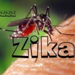 13 Things You Should Know About The Not-So-Catastrophic Zika Virus! 13