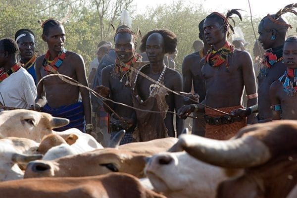 African Tribes: 10 Surprising Cultural Facts We Bet You Didn't Know! 6