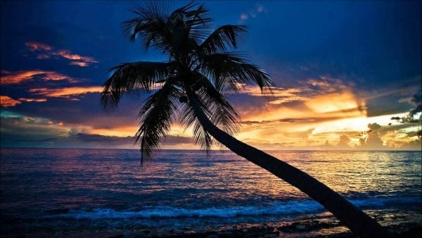 7 Reasons Why Goa Is The Best Youth Destination For Vacations 4