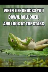 When-life-knocks-you-down-roll-over-and-look-at-the-stars