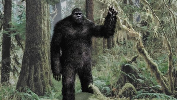 The Mystery of Bigfoot 7