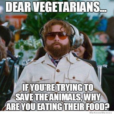 Stupid Questions Faced By Vegetarians 8