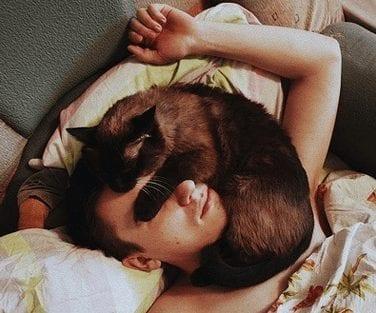 cat-sleeping-on-face1