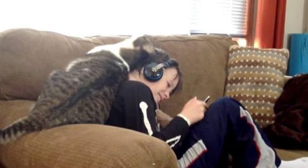 cat@work.com