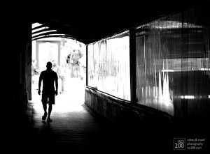 walking_out_of_the_light