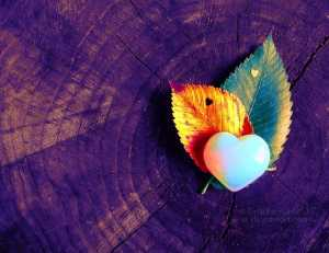 __nature__s_love_for_popart_1___by_graphicsgirl983-d56eu4v heartbreak