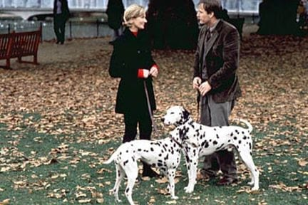 4 Movies Which Every Dog Lover Will Enjoy 2