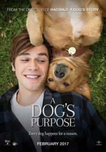 4 Movies Which Every Dog Lover Will Enjoy 3