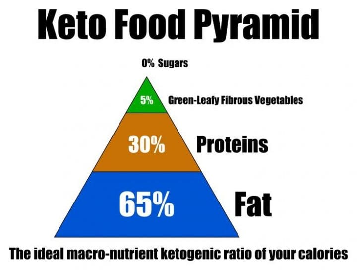 """""""Fat Doesn't Make You Fat""""- All About The Ketogenic Diet 9"""