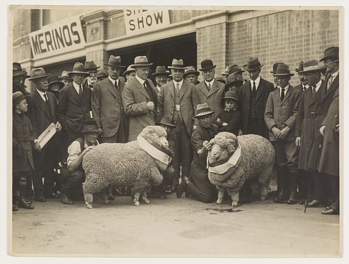 maryland sheep and wool, Festivals in the US