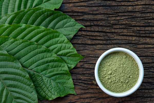 Learn About Red Borneo Kratom and How it Is Similar to CBD 1