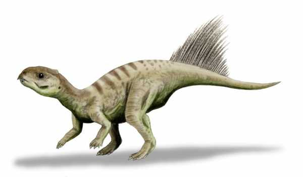 The Top Cute Baby Dinosaurs Ever 2