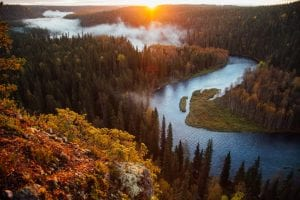How to Get Finland Work Visa from India? 1