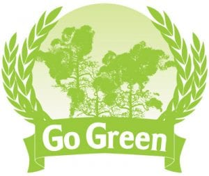 Who is a Green Influencer? 6