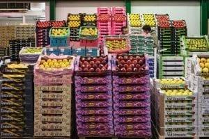 Rungis International Market