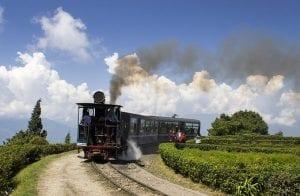 Toy train - Darjeeling