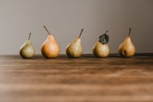 Different varieties of pears