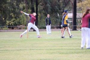 stete level cricket team