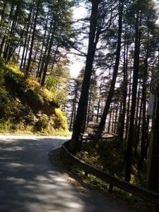 Top 10 Best Romantic Places in Shimla 5
