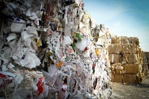 Environmental Mystery: 25 Interesting Facts About the Environment 4