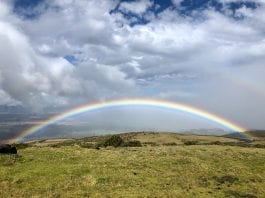 A fully visible rainbow.