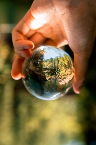 Environmental Mystery: 25 Interesting Facts About the Environment 14