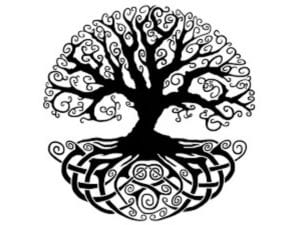 Tree Of Life Meaning In 7 Beautiful Cultures 2