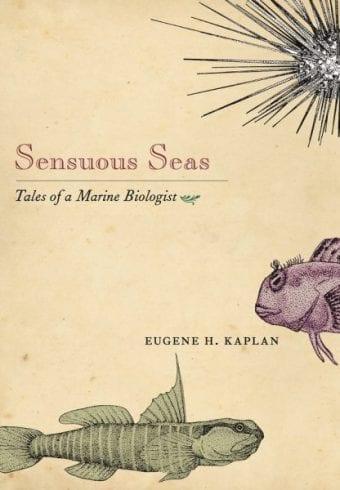 sensuous sea