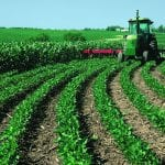 Top 3 Successful Farming Stories In The World 28