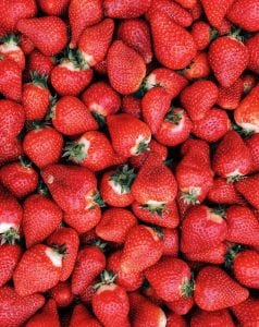 There are various kinds of strawberries in the world