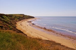 Isle Of Wight: 10 Brilliant Guide Points 4