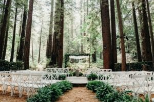 14 Stunning Forest Wedding Venues 15