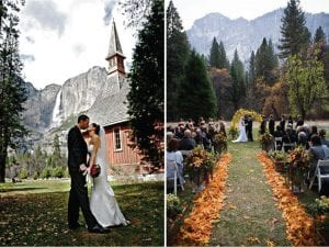 14 Stunning Forest Wedding Venues 2