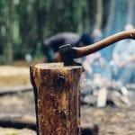 Knowledge 101: Hiring A Professional Arborist 29