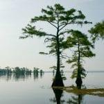 Top 10 East Texas Lakes 14