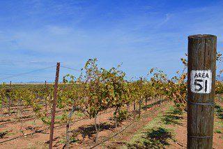 Sonoita Wineries
