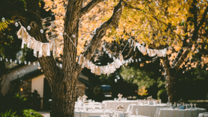 Top 10 Amazing Wedding Venues In Arizona 4