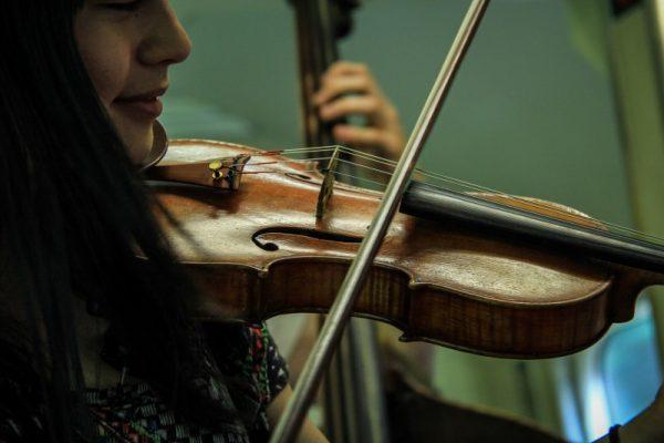 Structure - fiddle vs. violin
