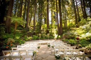 rich results from bing.com when searching for Forest Wedding Venues
