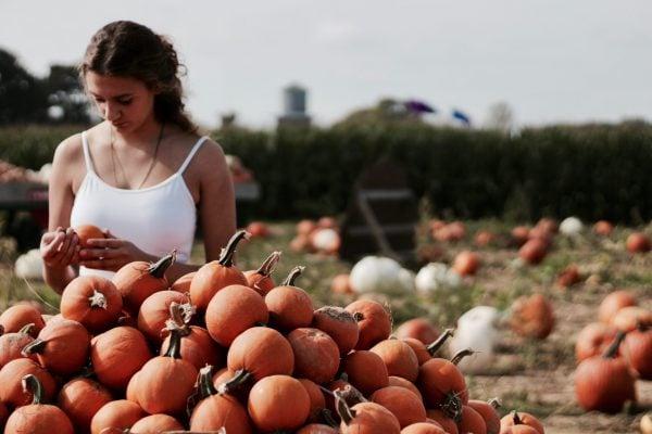 9 Best Pumpkin Patch Nashville Sites 17