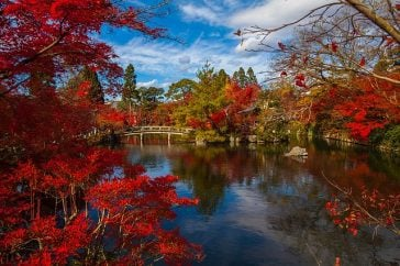 5 Best Places Where to Stay in Kyoto 98