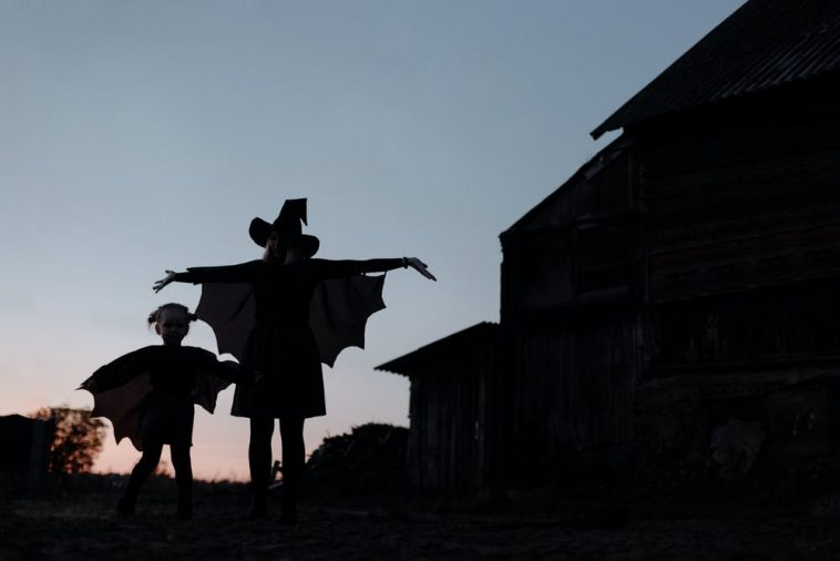 11 Scary Haunted Houses in Illinois 4
